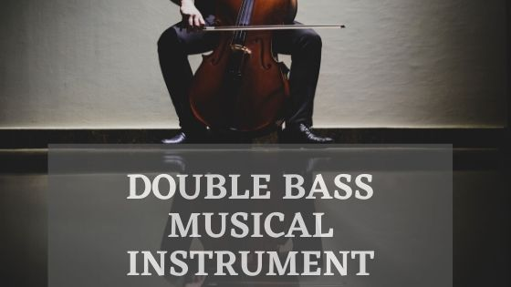 Double bass instrument